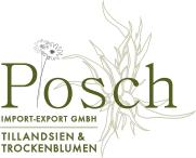Posch Tillandsien und Trockenblumen Logo